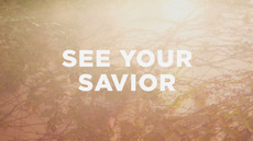 20121013_see-your-savior_medium_img