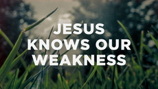 20130824_jesus-knows-our-weakness_medium_img